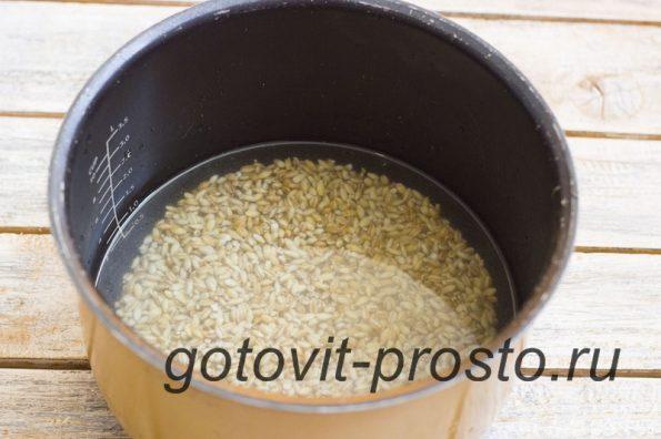 перловка в мультиварке рецепты с фото